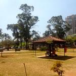 Bosque Maia